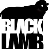 Black Lamb Estudio