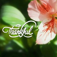 Photo Editing portfolio item