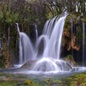 Nature Photography portfolio item