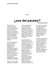 Spanish Translation portfolio item